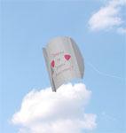 1st anniversary paper kite