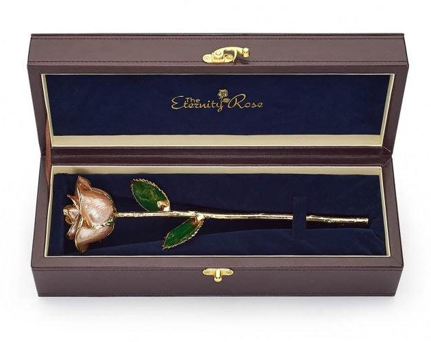 Pearl Anniversary rose