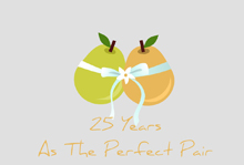 25 years the perfect pair invitation