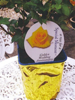 golden anniversary rose