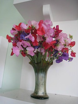 sweetpea centerpiece