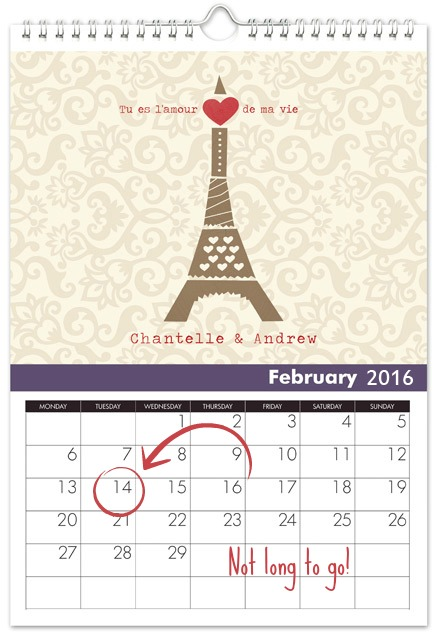 february anniversary gifts